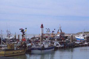 """La Cotiniere - """"der"""" Fischerhafen der Region"""