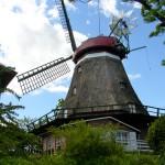 Alte Windmühlen (wie hier in Lindau an der Schlei) prägen immer noch die Landschaft der Region