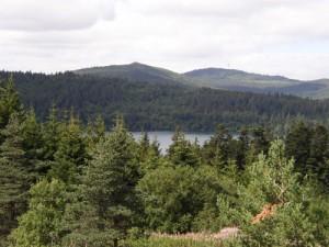 der Lac du Bouchet ist ein mit Wasser gefüllter alter Vulkankrater, dessen reines (Trink)Wasser kein Tier- und Pflanzenleben zuläßt