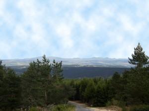 Eine gigantische Aussicht genießt man von den Höhenzügen des Margeride. Auf rund 1400 Meter Höhe befindet sich auch das Bison-Reservat