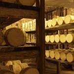 Roquefort-Käse reift über 90 Tage in Felsenkellern
