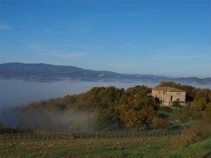 Herbst in der Toskana, westlich von Siena