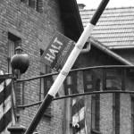 Der Eingang zum Arbeitslager Ausschwitz