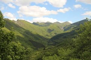 Blick ins Tal des Foret de Saou