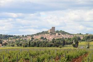 Chateauneuf du Pape im Rhonetal