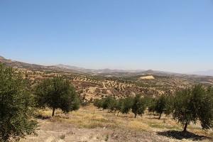 Blick von Agia Varvara Richtung Lassithi-Plateau
