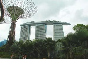 Die künstlichen Bäume, die Dank Solarzellen fast so wie richtige Bäume funktionieren. Singapur... tststs!