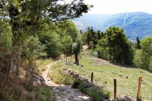 Abstieg auf der Via Podiensis nach Monistrol