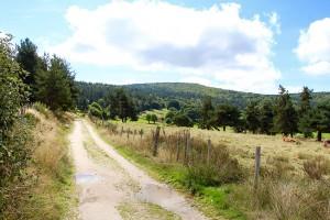 Aufstieg hinter dem Weiler Chazeau