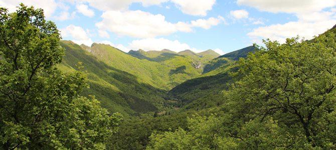 Foret de Saou – Wandern und Klettern im Departement Drome