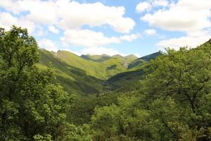 Blick von Westen nach Osten durch das Tal des Foret