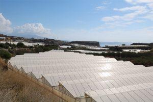 Gewächshäuser so weit das Auge rund um Ierapetra blicken kann...