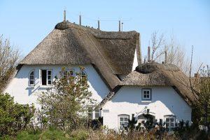 Reetdächer geben den Häusern vor allem in Nebel einen friesischen Charme