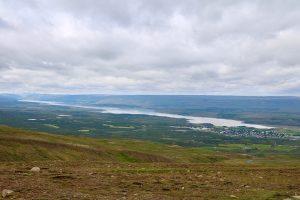 der Hallormsstaðaskógur am Lagarfljot ist Islands größte zusammenhängende Waldfläche