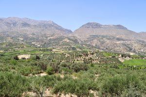 das Mount Ida Massiv mit dem Taleinschnitt von Krousonas
