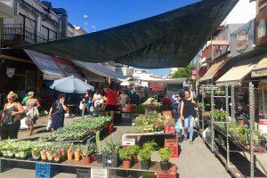 unterwegs auf dem Markt von Mires
