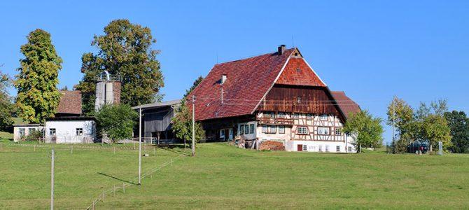 Historische Höfe und Mühlen: Eine Wanderung im Schwarzwald