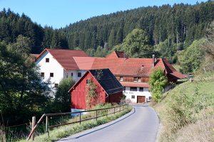"""die """"Mühllehen Mühle"""" ist nachweislich seit 1441 in Betrieb - und auch heute noch. Vor Ort kann man im Mühlladen einkaufen."""