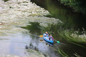 """beliebte """"Urlaubsbeschäftigung"""": wie an der Dordogne kann man auch an der Vezere an vielen Orten ein Kajak mieten."""