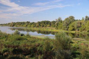 Sumpf, Untiefen und Treibsand in den Nebenarmen der Loire - Baden daher verboten!
