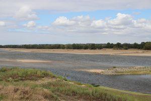 die Loire bei Montjean im Unterlauf. Der Fluss verliert hier langsam seinen natürlichen Charakter
