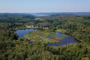 """""""les 1000 etangs"""" - Blick auf die Seen bei Faucogney-et-la-Mer"""