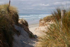 Sylter Dünen oder Strand im Finistere - das ist hier die Frage :)