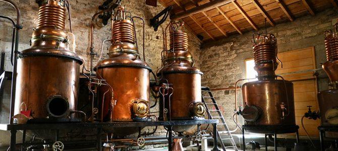 Altes Handwerk aus Fougerolles: Verarbeitung von Kirschen auf höchstem Niveau