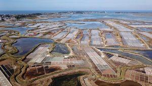 Die Salzgärten von Guerande - am Horizont ist Le Croisic zu sehen