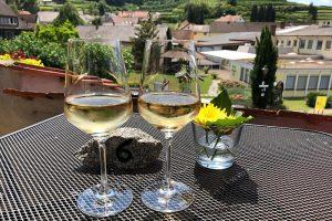 Weinprobe auf der Sonnenterrasse des Weingut Hauser-Bühler in Bickensohl