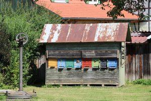 historisches Bienenhaus im Bauernmuseum von Ödenstetten